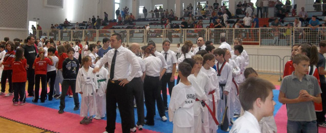 Taekwondo_2013